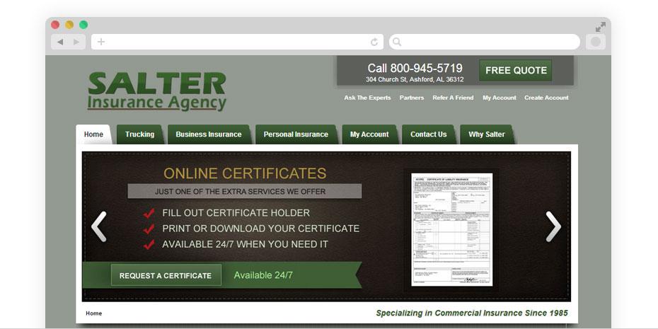 Insurance website design for Salter.